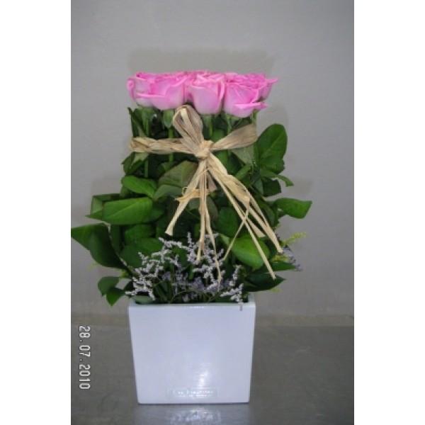 Όρθια τριαντάφυλλα σε κύβο